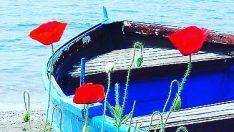 Gizemli Bir Liman / Samet Tunca